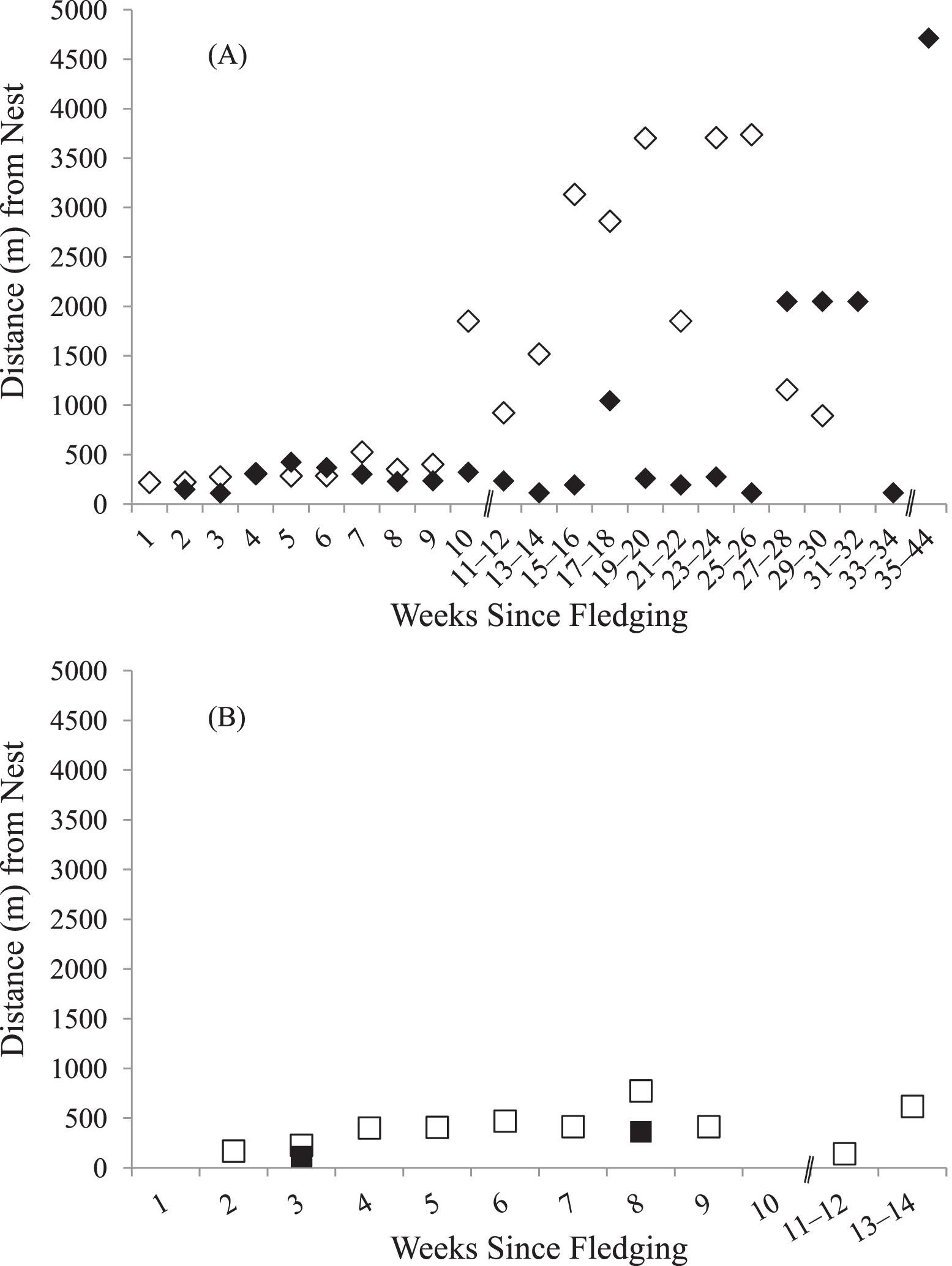 Association of Sex, Fledging Date, and Sibling Relationships