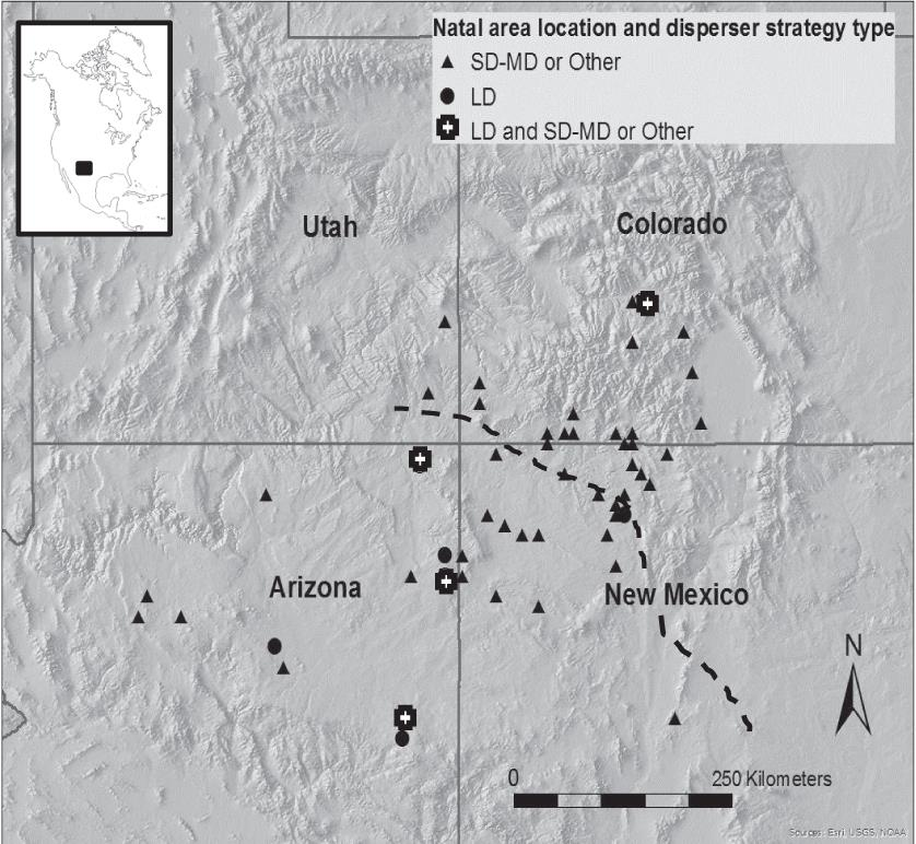 First-Year Dispersal of Golden Eagles from Natal Areas in the