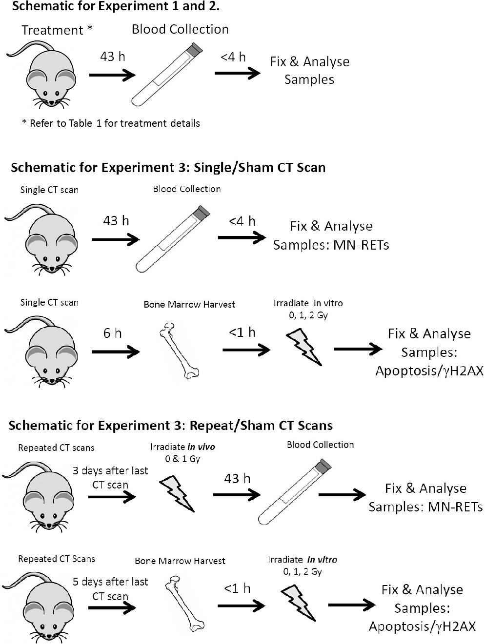 Biological Effects and Adaptive Response from Single and Repeated