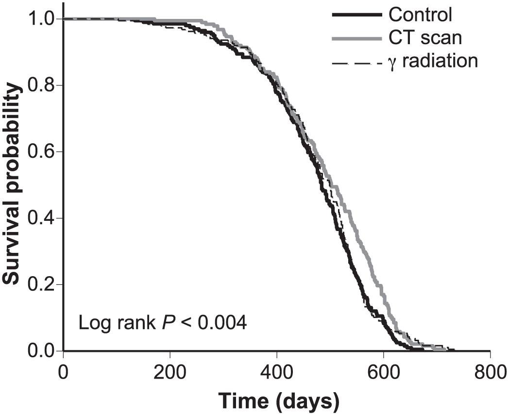 Single CT Scan Prolongs Survival by Extending Cancer Latency in