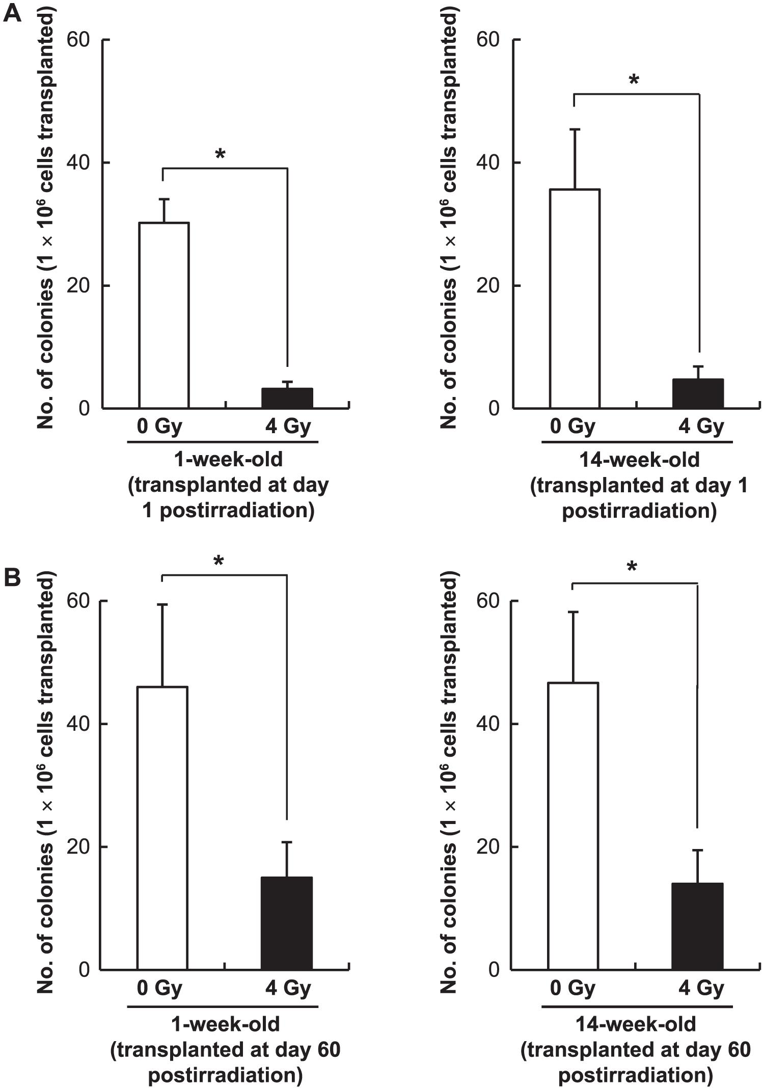 Age Dependence of Radiation-Induced Genomic Instability in Mouse