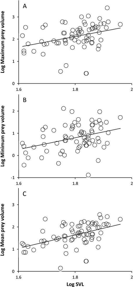 Feeding Habits and Predator-Prey Size Relationships in the