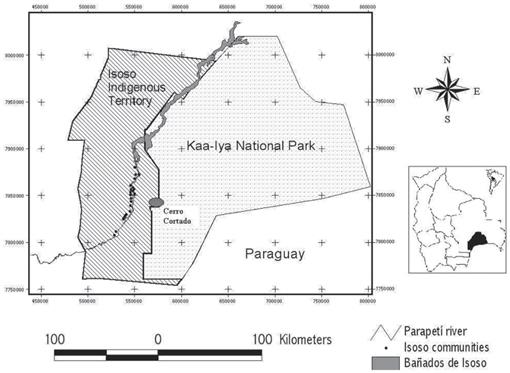 Activity and Ranging Behavior of the Red Tegu Lizard