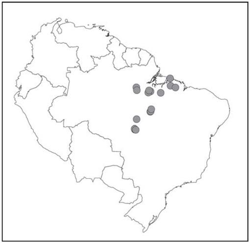 Systematics Of The Neotropical Genus Leptodactylus Fitzinger 1826