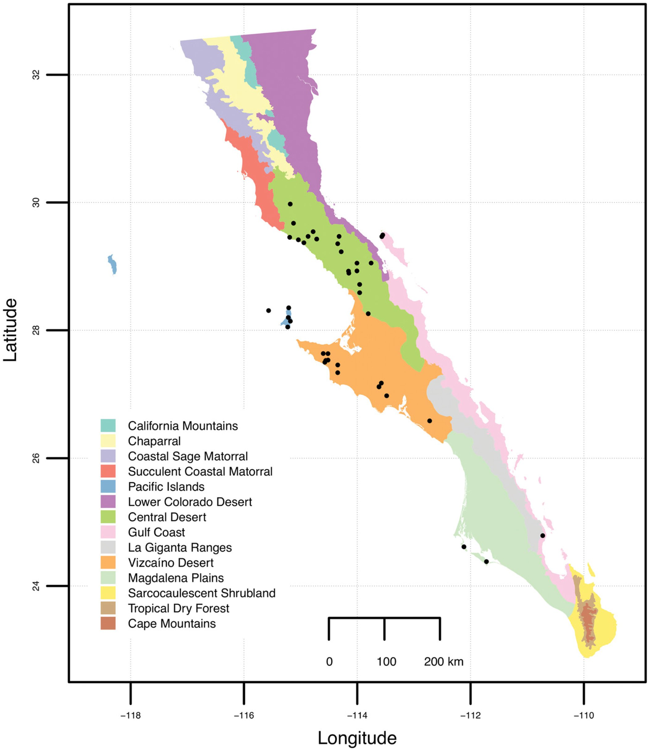 Baja: A New Monospecific Genus Segregated from Cheilanthes