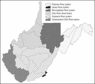Distribution and Conservation Standing of West Virginia Crayfishes