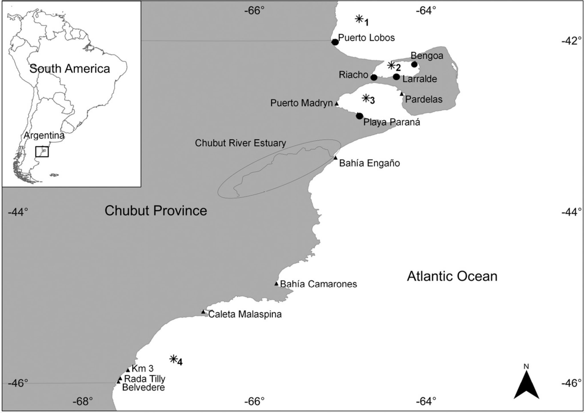 Dinophysis Species Associated With Diarrhetic Shellfish Poisoning