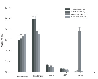 Resistance to Permethrin in Aedes aegypti (L ) in Northern Mexico