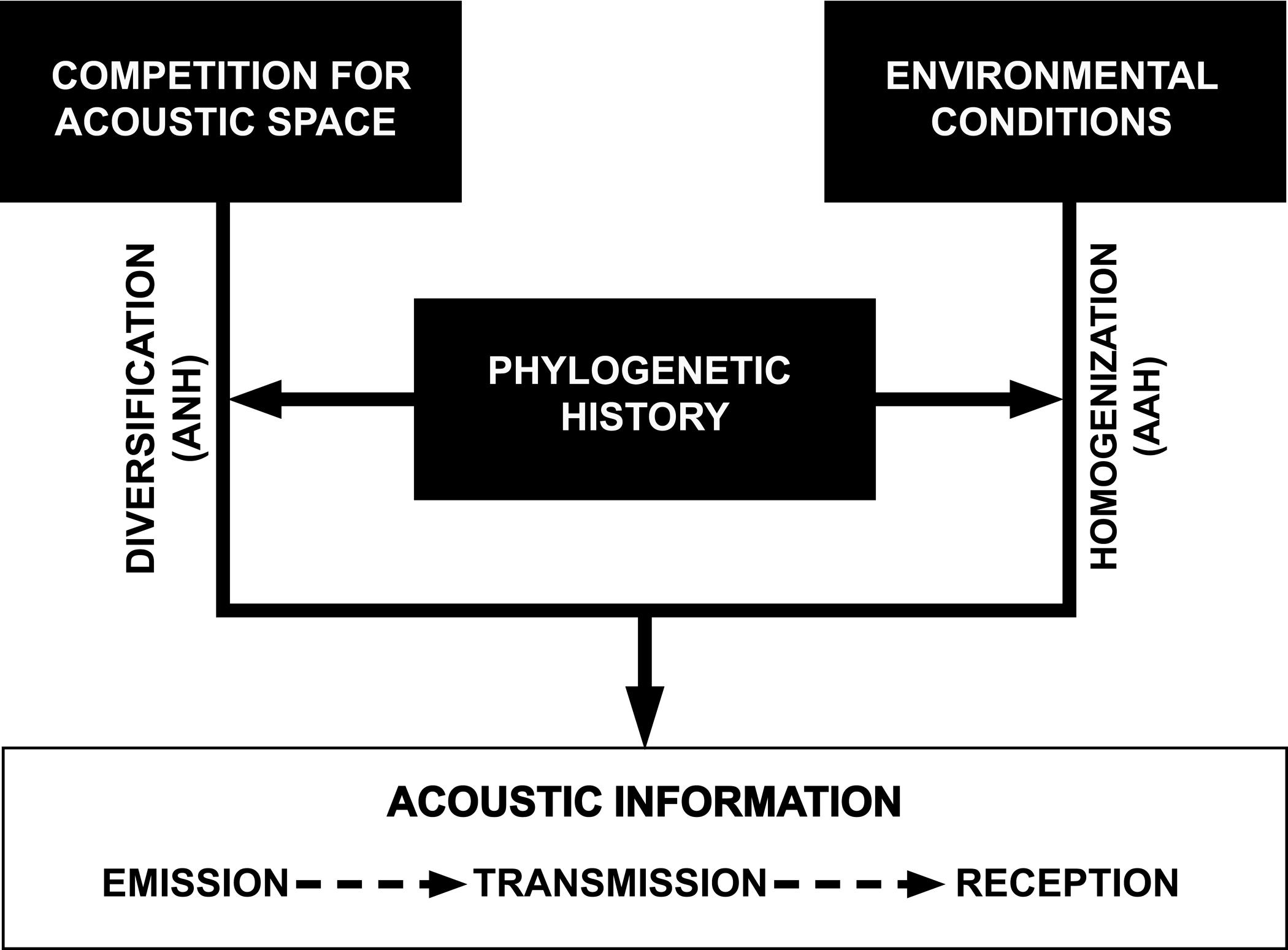 Future directions for soundscape ecology: The importance of