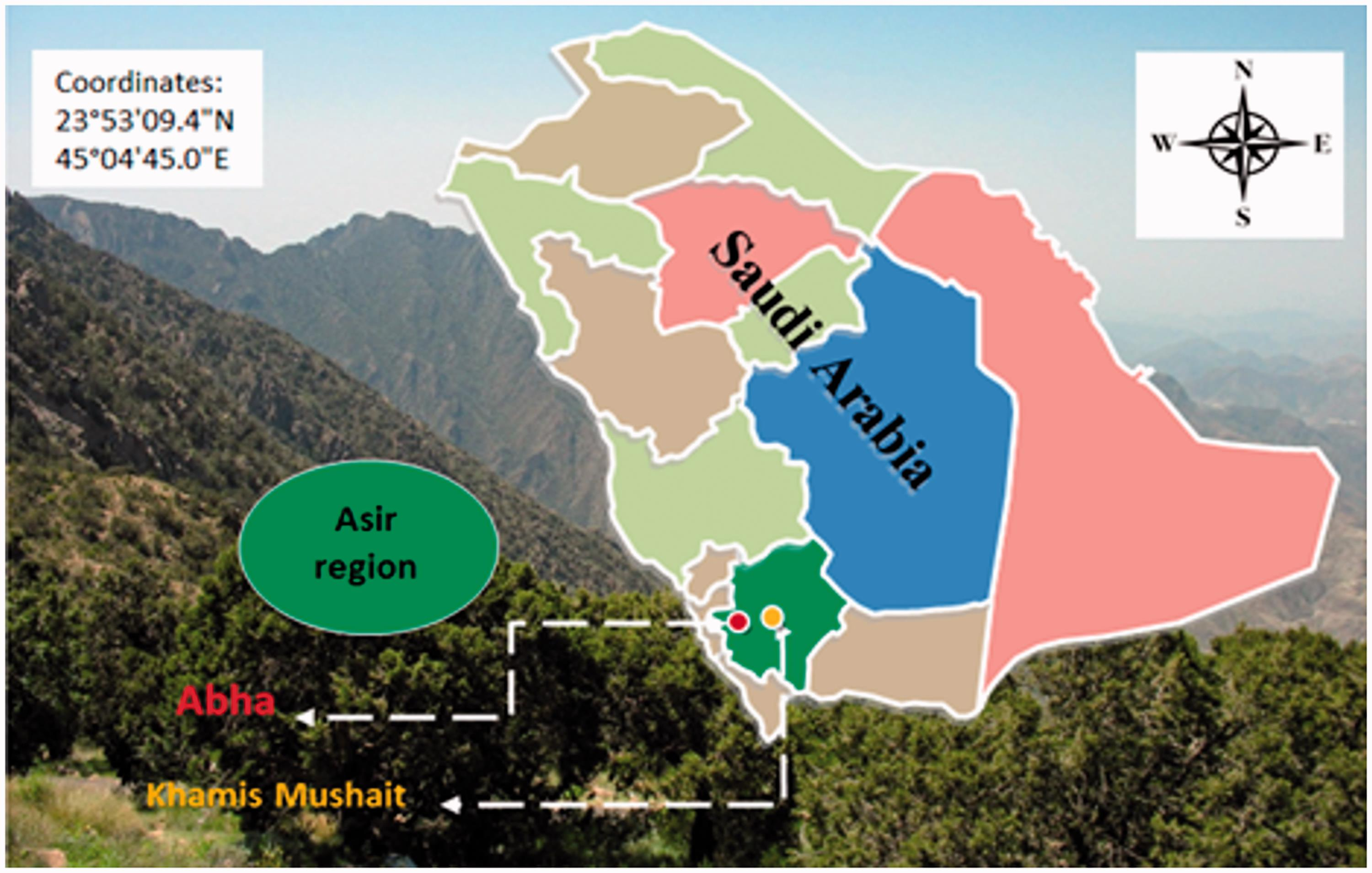 Ethnobotanical Phytochemical And Biological Study Of Tamarix Aphylla And Aerva Javanica Medicinal Plants Growing In The Asir Region Saudi Arabia