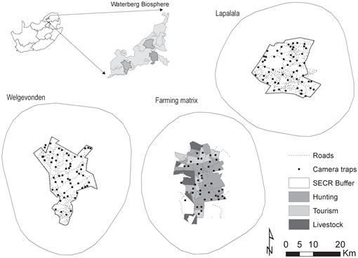 Density of leopards Panthera pardus on protected and non