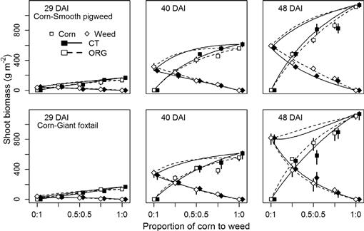 Nitrogen Competition Between Corn And Weeds In Soils Under