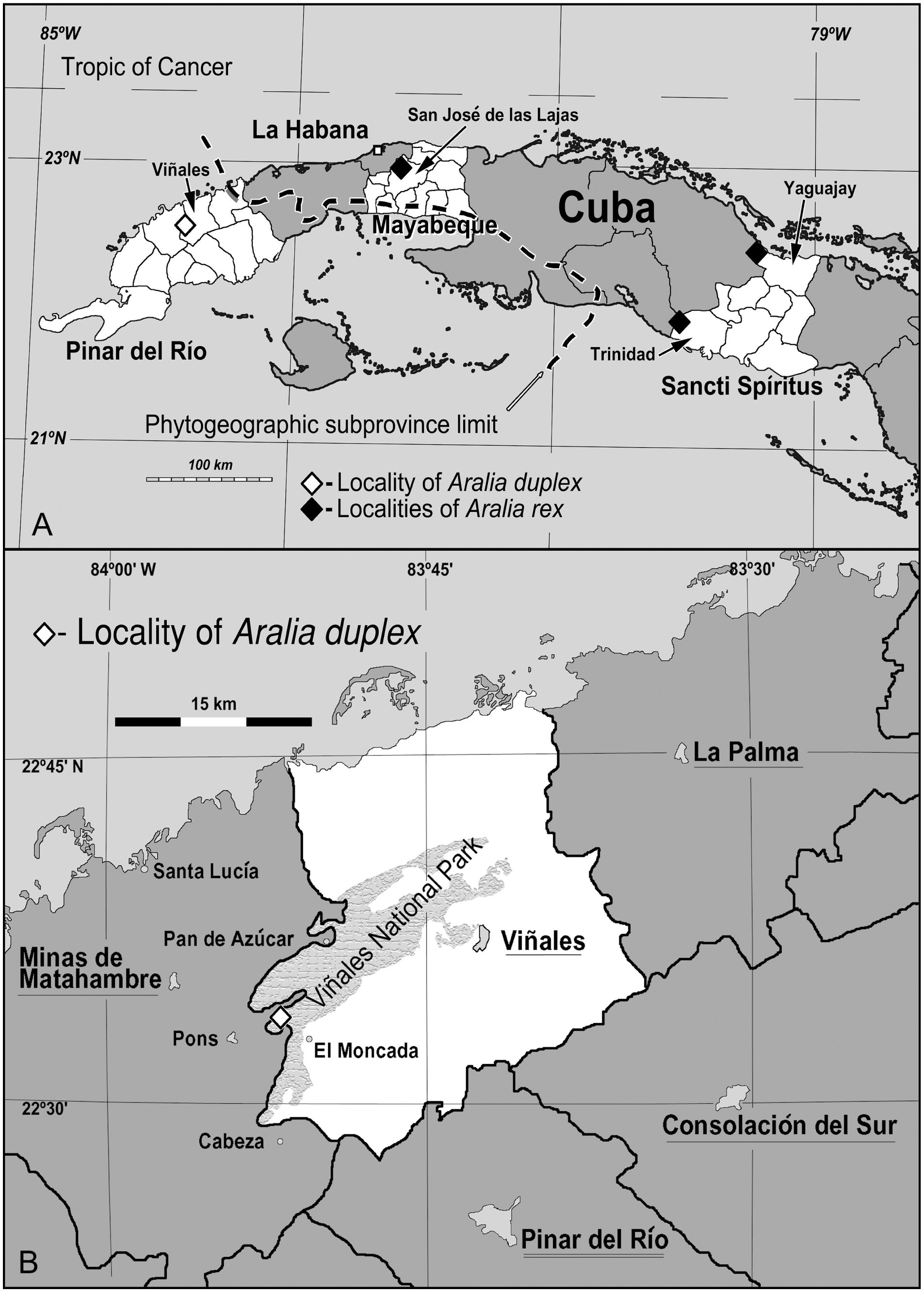 A Critically Endangered New Species Of Aralia Araliaceae From Cuba