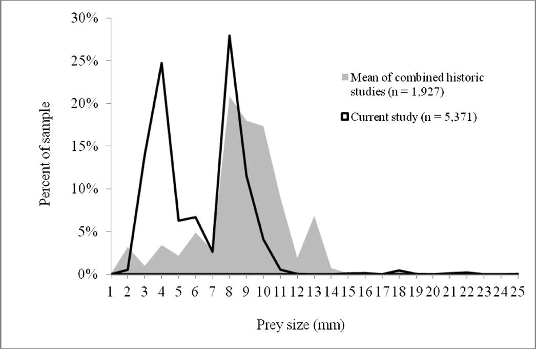 Prey items of the Black Swift (Cypseloides niger) in Colorado and a