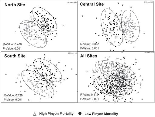 Pinyon Pine Mortality Alters Communities of Ground-Dwelling