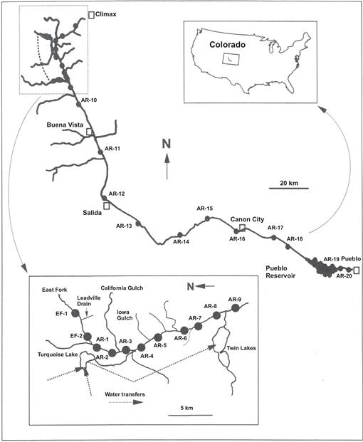 Species Richness, Diversity, and Ecology of Chironomidae ... on