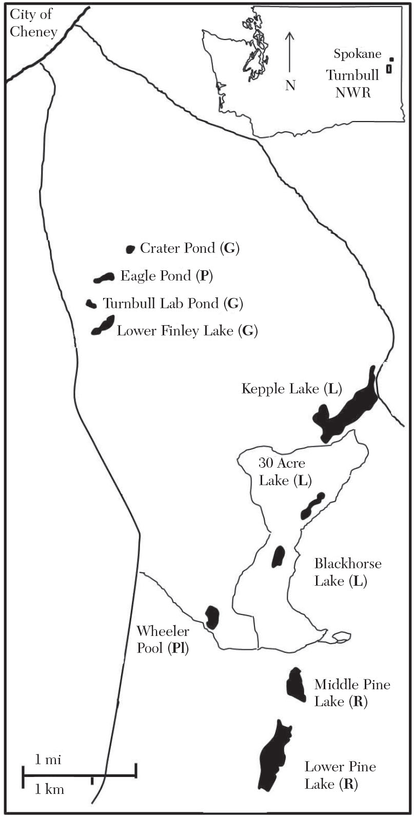 relative abundance of pond snails in turnbull national wildlife Biology Lab laboratory for ecological studies area of the refuge the symbols in parentheses indicate the dominant genus at each pond gyraulus sp g lymnaea sp