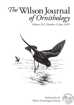 Invitation to join the Ornithological Society of Japan