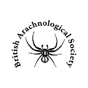 British Arachnological Society Logo