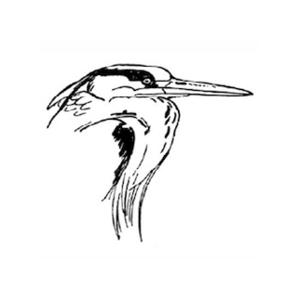 Netherlands Ornithologists' Union Logo